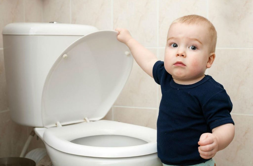 reasons for toilet problems