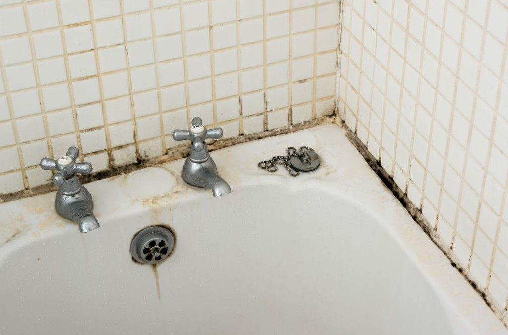 prevent bathroom mould growth
